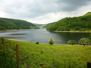 Ladybower Reservoir Photo in England's Peak District National Park