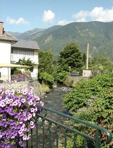 Flowers and mountains in Luchon