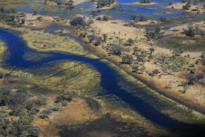 Stunning photograph showing the view of the Okavango Delta, the world's largest delta, from the air in Botswana in Africa