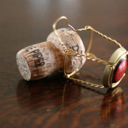 Secret to success champagne cork go for your dreams