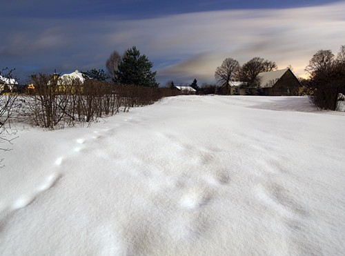 Latvia - Top Ten Ethical Travel Destinations snowy landscape