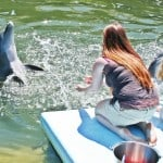 USA - Florida - Dolphin Research Center - Children helpl train dolphins - everyone seems happy