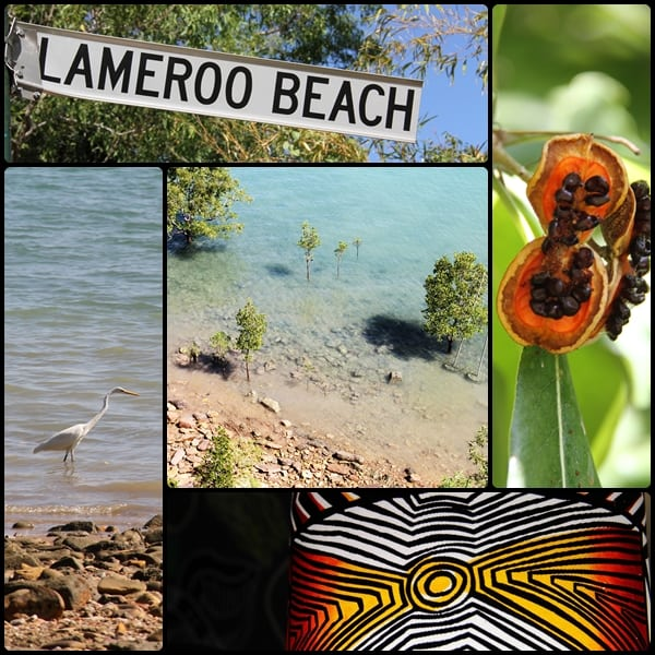 Lameroo Beach Darwin photo montage