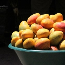 Photos of cartagena fruit
