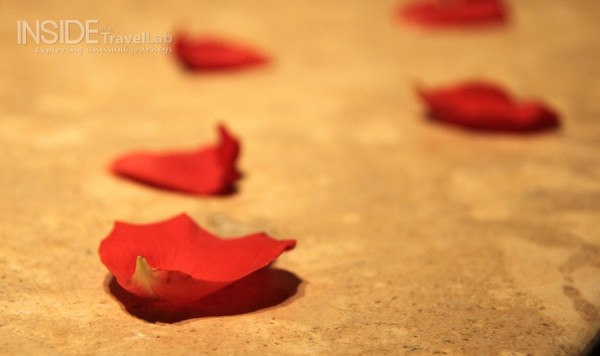 Atlas mountains Rose Petals