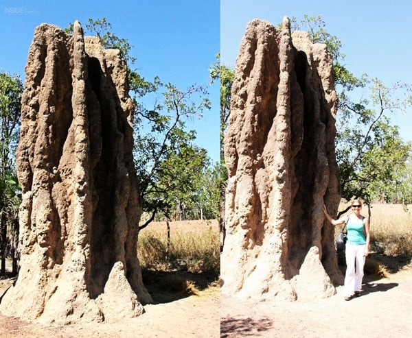 Australia - Northern Territory - Litchfield Park - Woman in front of magnetic termite mounds - Abigail King