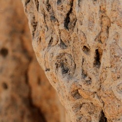 Termite mound close-up