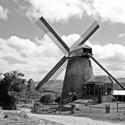 The last mill in Barbados?