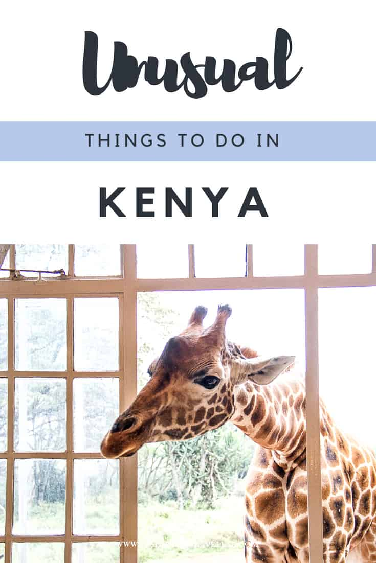 Unusual things to do in Kenya - take a look at some of the ways you can travel in Kenya here. From having breakfasts with giraffes in Giraffe Manor to flying across green meadows, finding endangered species, shopping and more, here\'s what to expect from travel in Kenya. #Kenya #Africa #safari #Giraffe