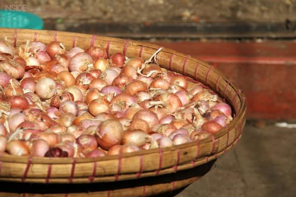 onions in the sunlight