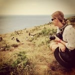 Talking to puffins in wales