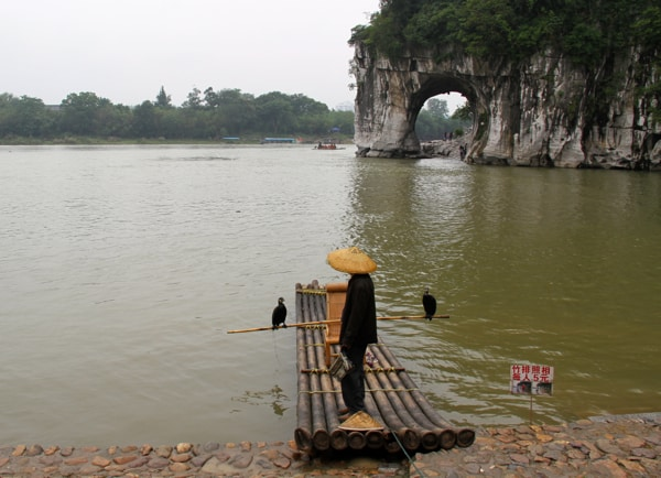 Man with bird in Guilin