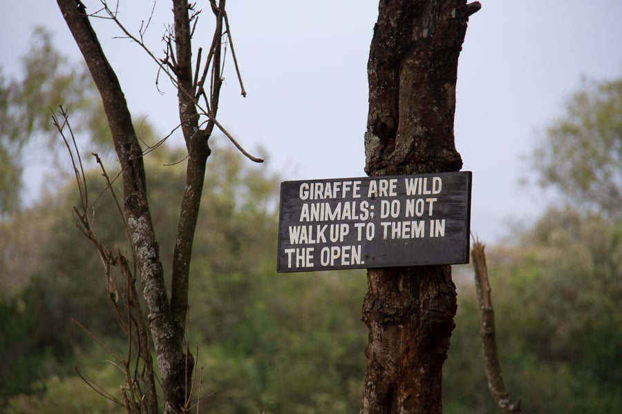 Giraffes are wild animals sign in Kenya