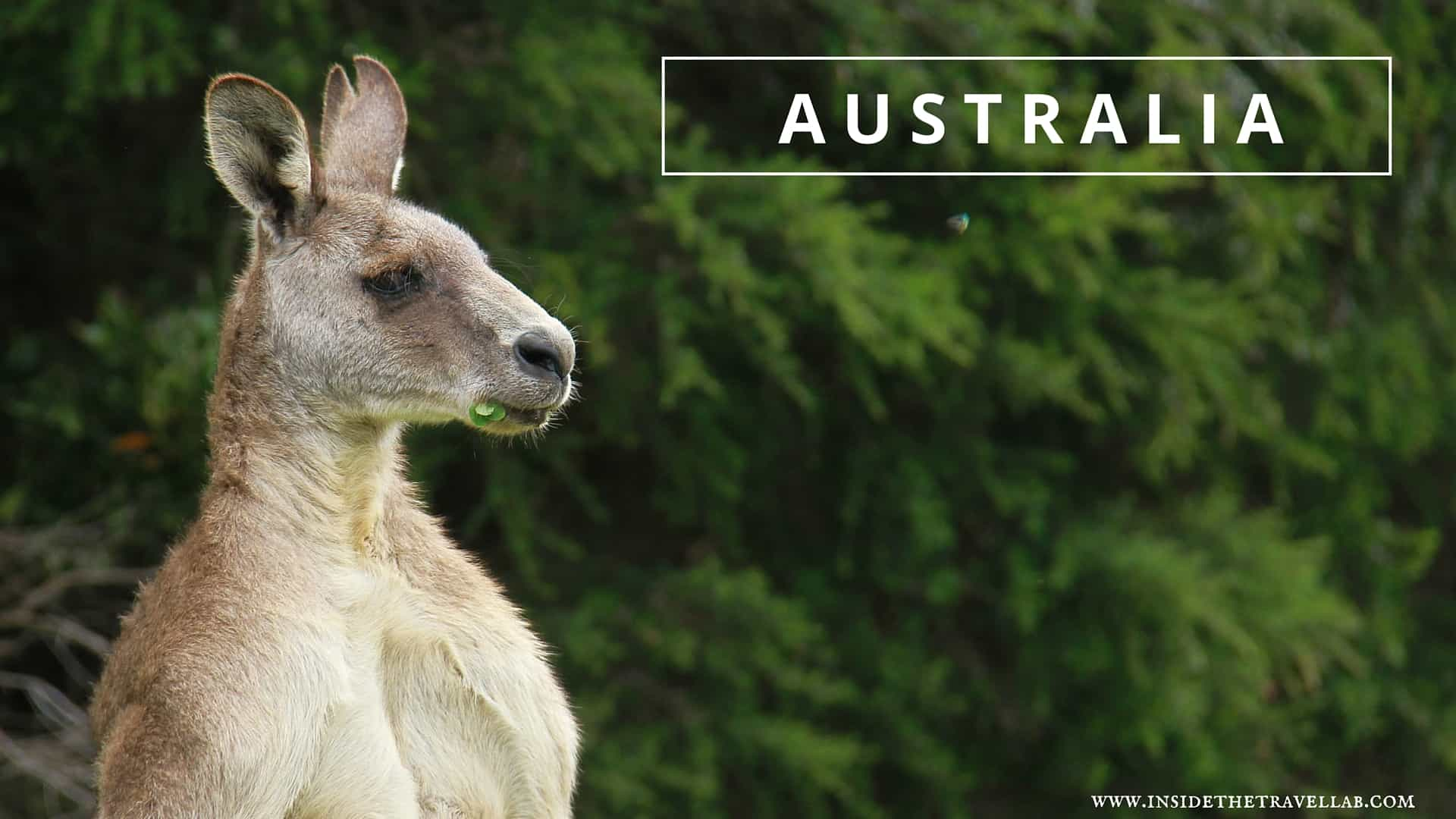 Best places to visit in Australia via @insidetravellab