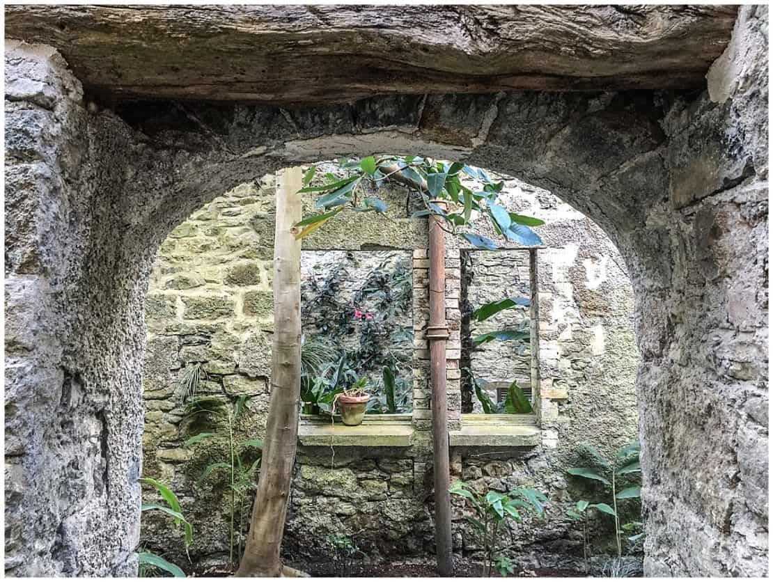 Aberglasney Gardens Carmarthenshire - a Tropical Castle in Wales