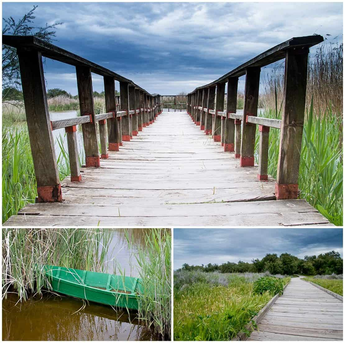 Tablas de Daimiel Spain walkways and wetlands
