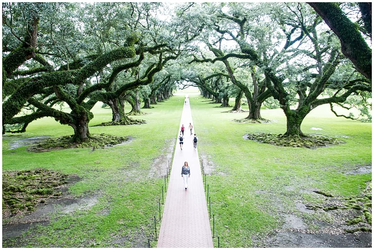 Abigail King Oak Alley PlantatRiver Road Louisiana-7
