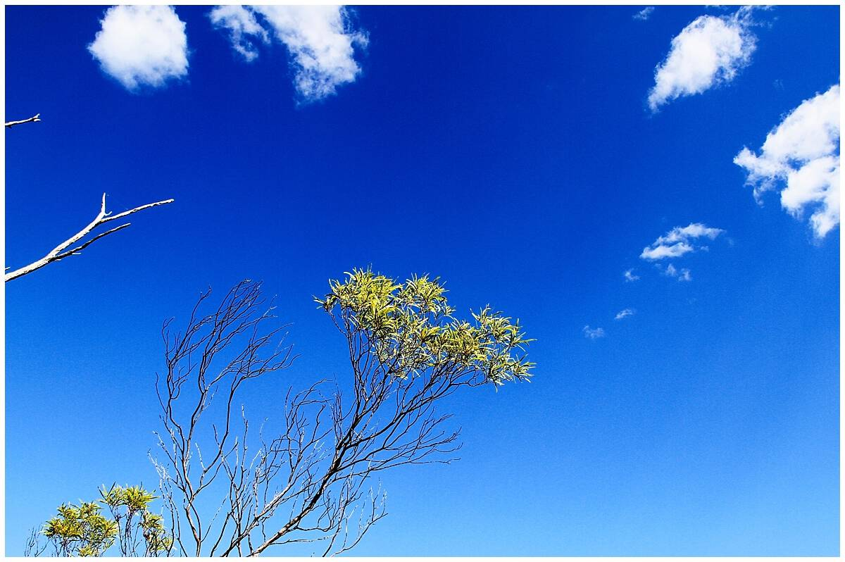 Deep blue sky in Australia