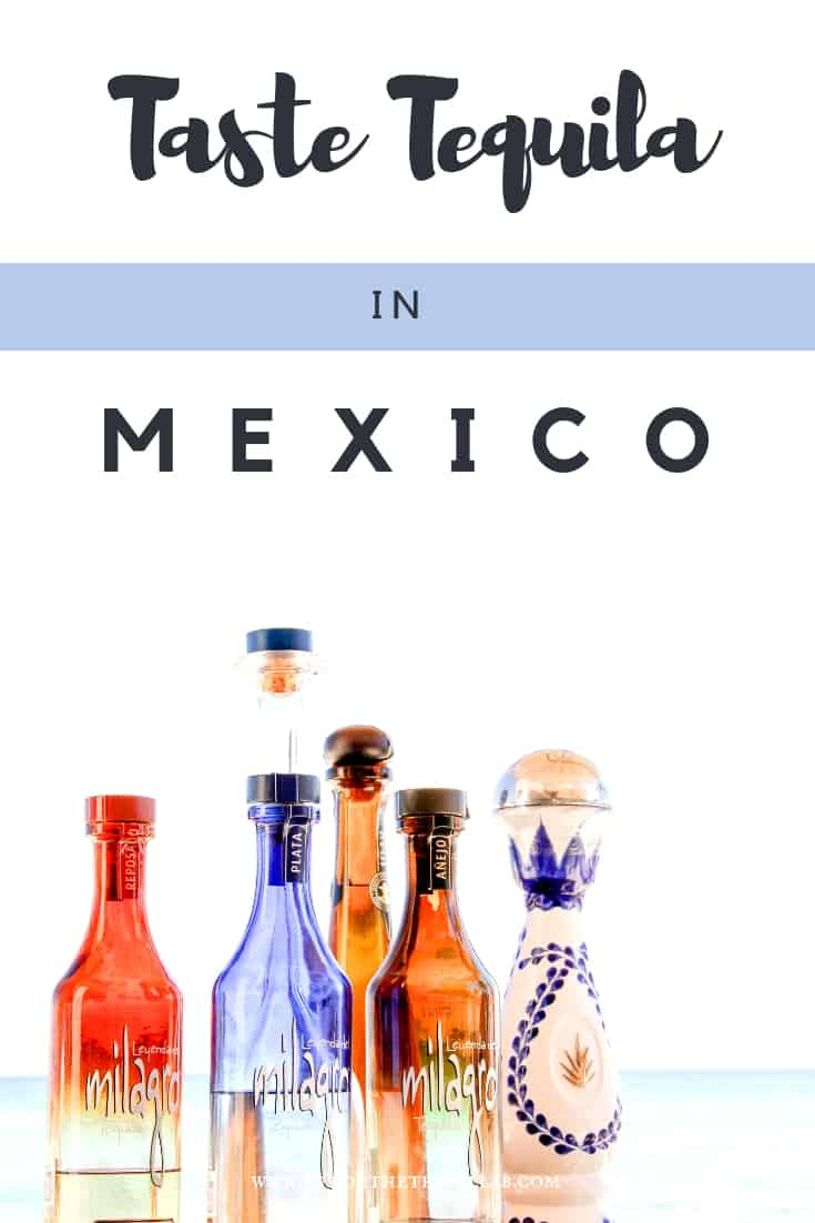 Taste Tequila in Mexico in the same way you would taste champagne in France. A tequila tasting is a great way to understand the culture in Mexico and challenge your previous ideas! #Mexico #Tequila #ideas
