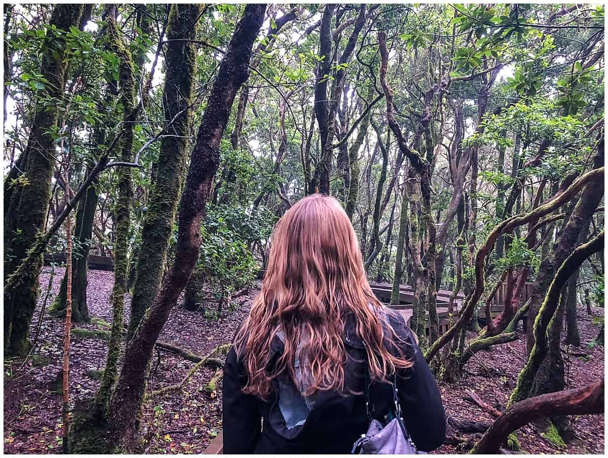 Abigail King walking through Anaga Natural Park