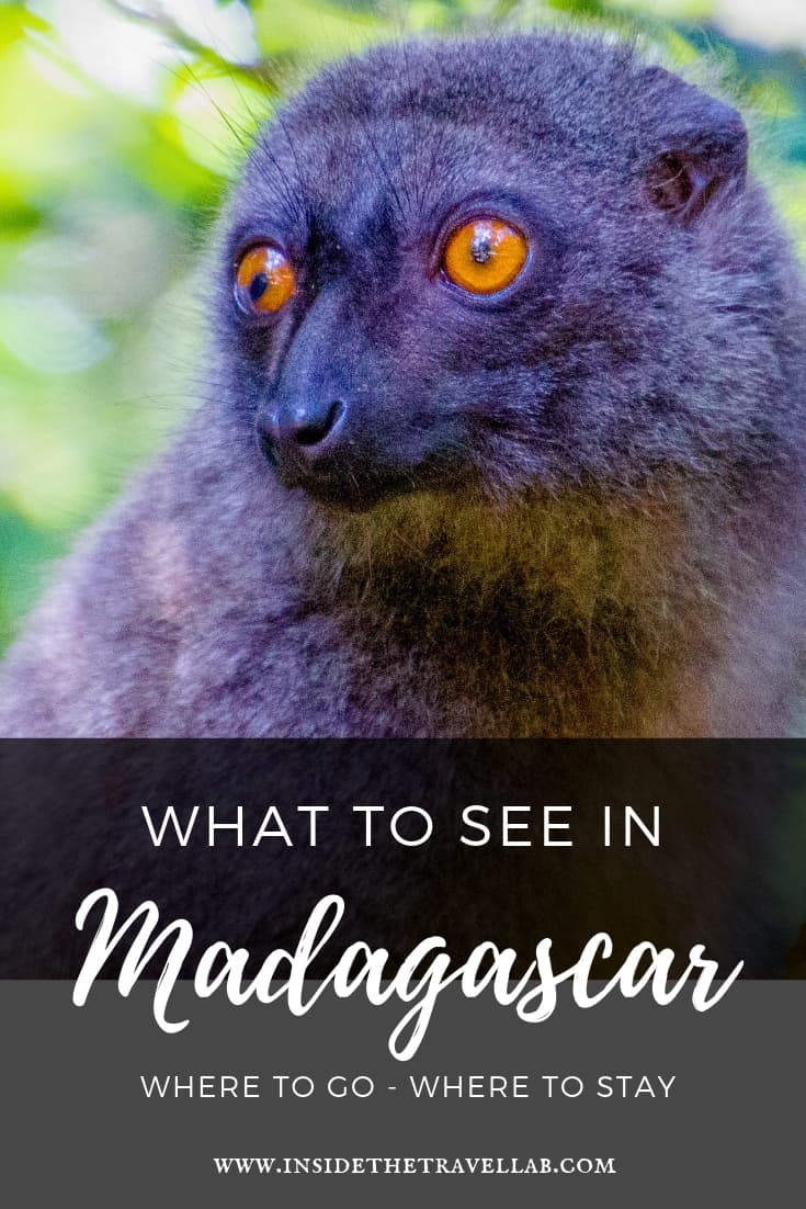 Things to do in Madagascar. Find a guide to the beautiful wildlife of Madagascar, including gorgeous eco-friendly luxury hotels and plenty of travel ideas for this trip to Africa. #madagascar #africa #travel