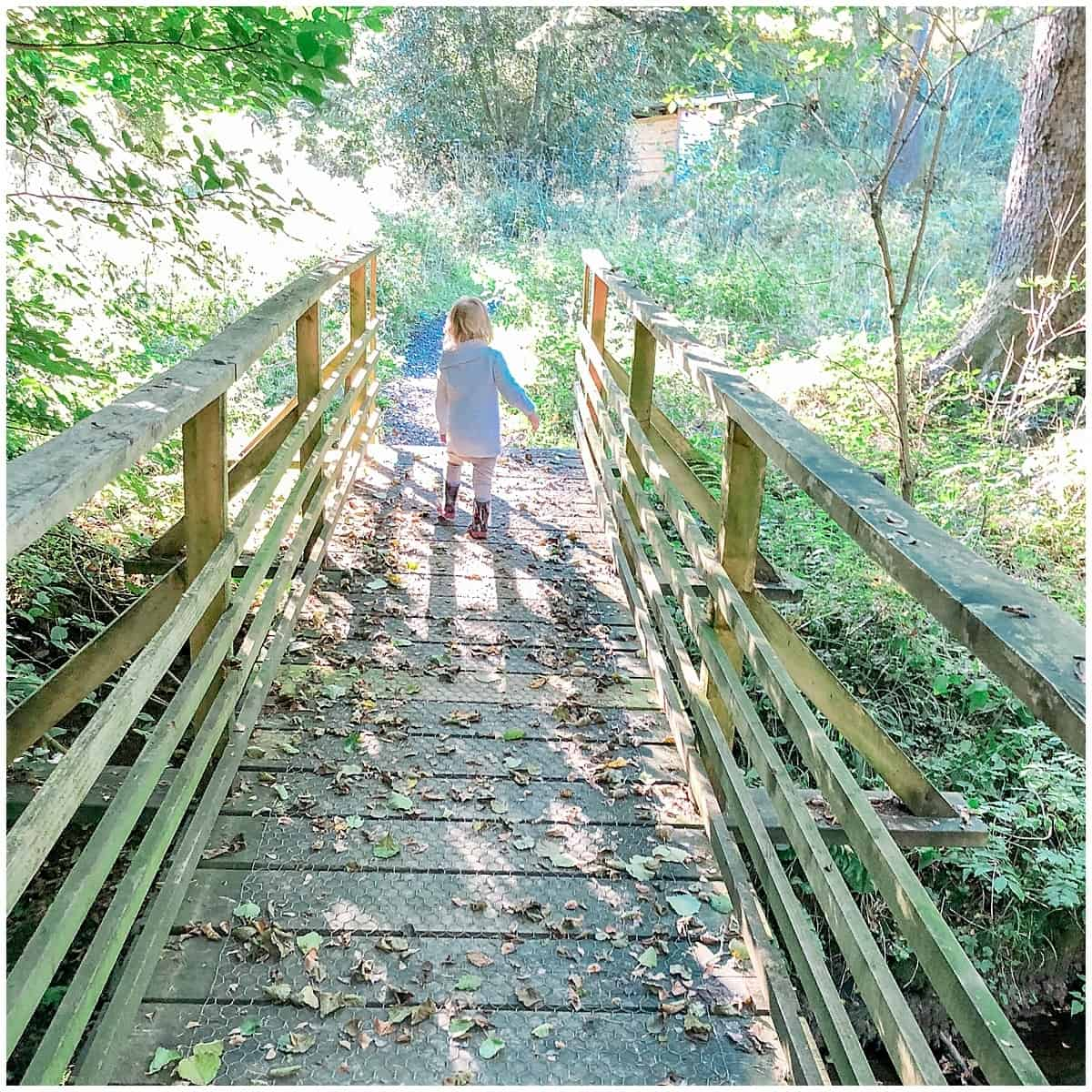 Toddler striding along a wooden path