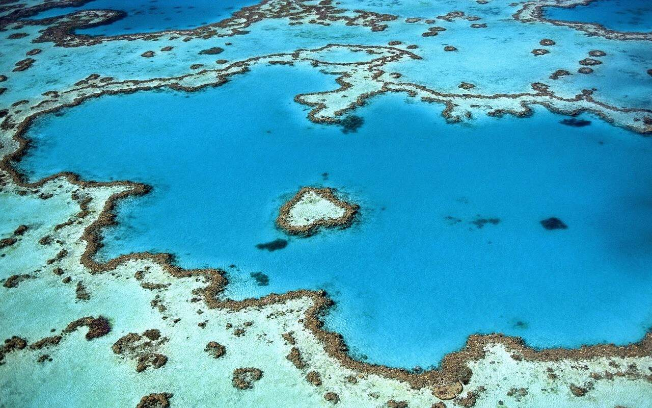 A Great Australian Landmark: The Heart Reef