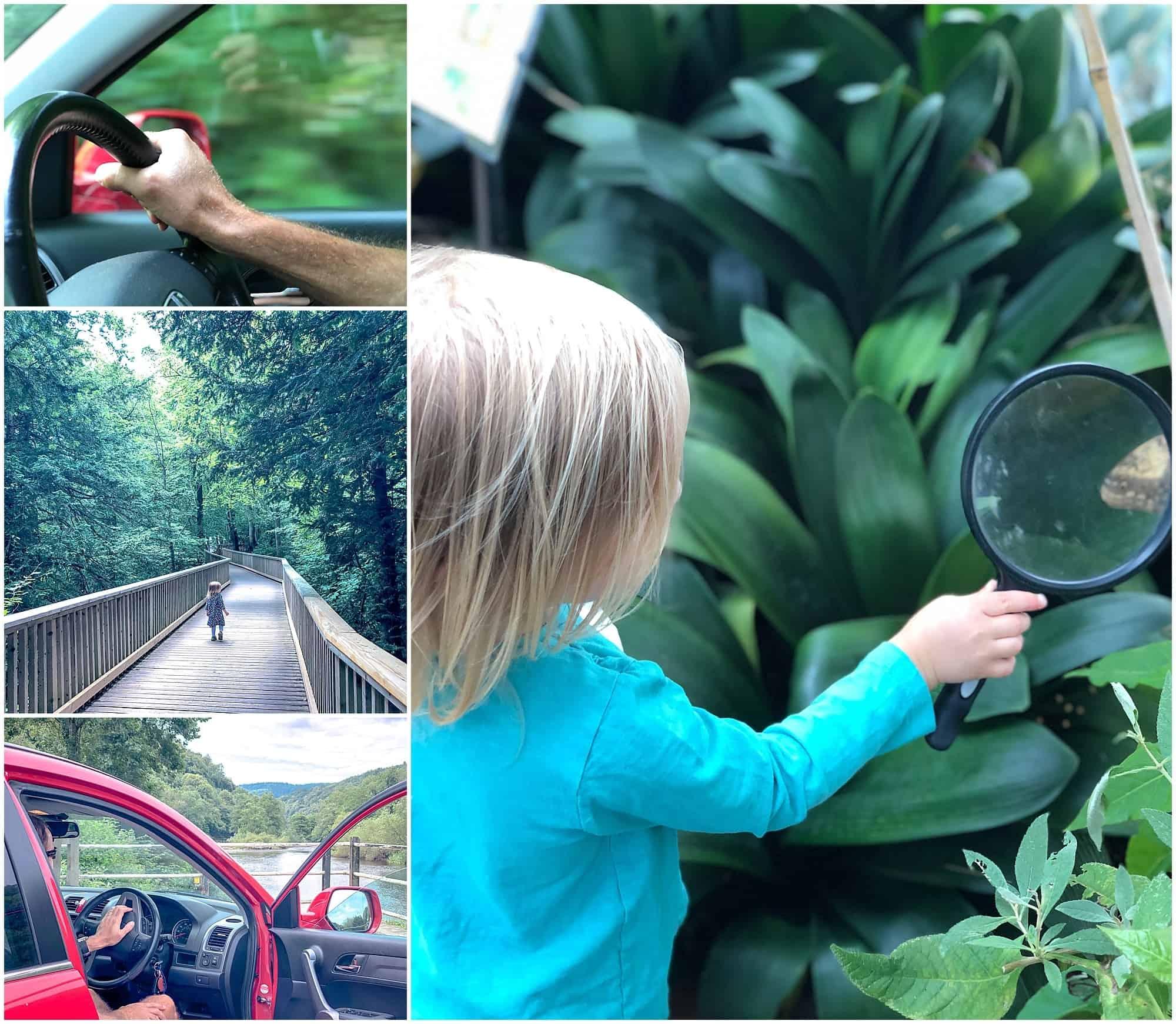 Road trip to Symonds Yat Rock collage