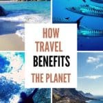 Benefits of travel - five ways travel helps the planet