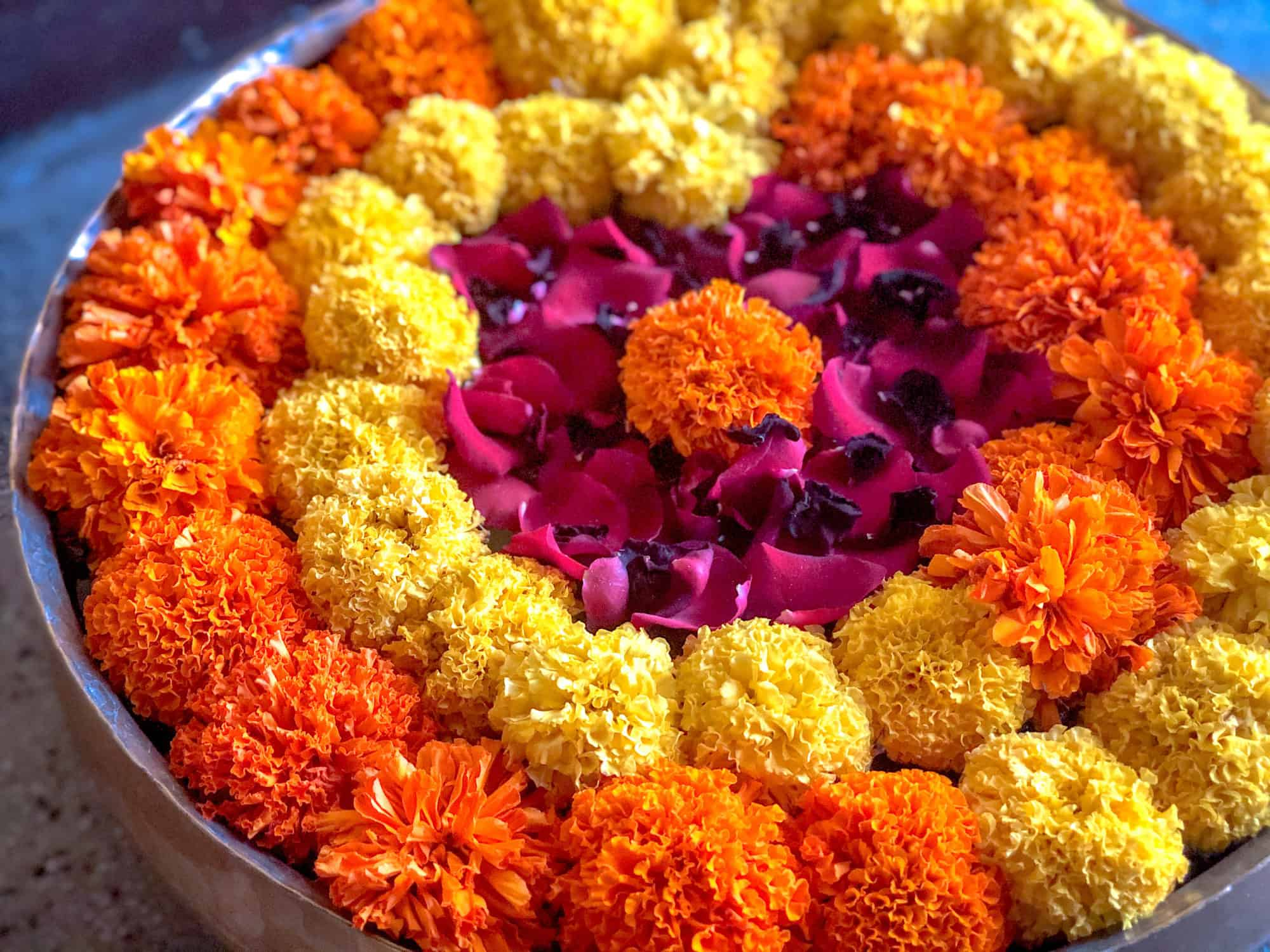 India - Karnataka -Mysore - Welcoming flower garlands