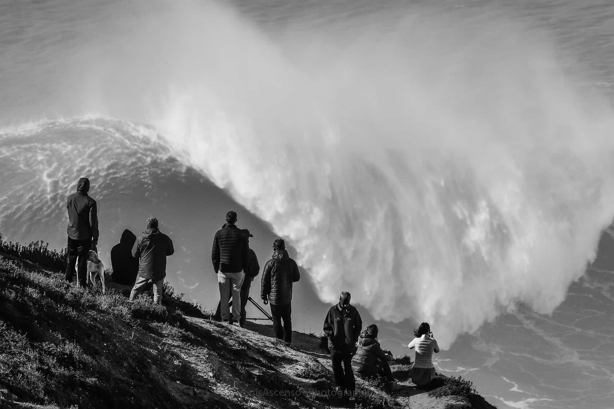 Portugal - Praia do Norte Beach - High waves unusual things to do in Portugal - Luis Ascenso