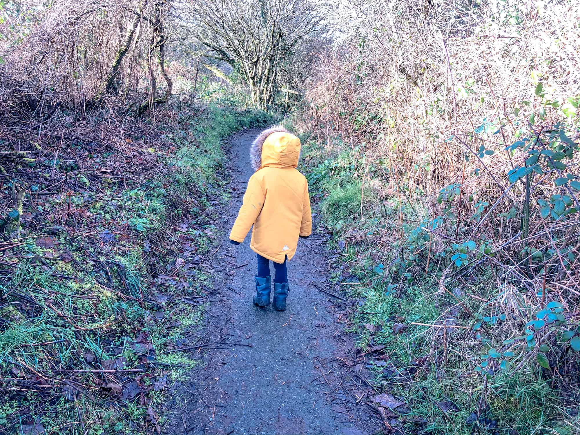 Wales - Pembrokeshire - Fishguard and around-toddler and preschooler walking along path