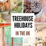 Treehouse holidays UK - glamping in England and Wales